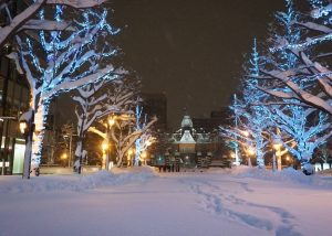 night view in Sapporo