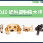 2019貓狗寵物險評比